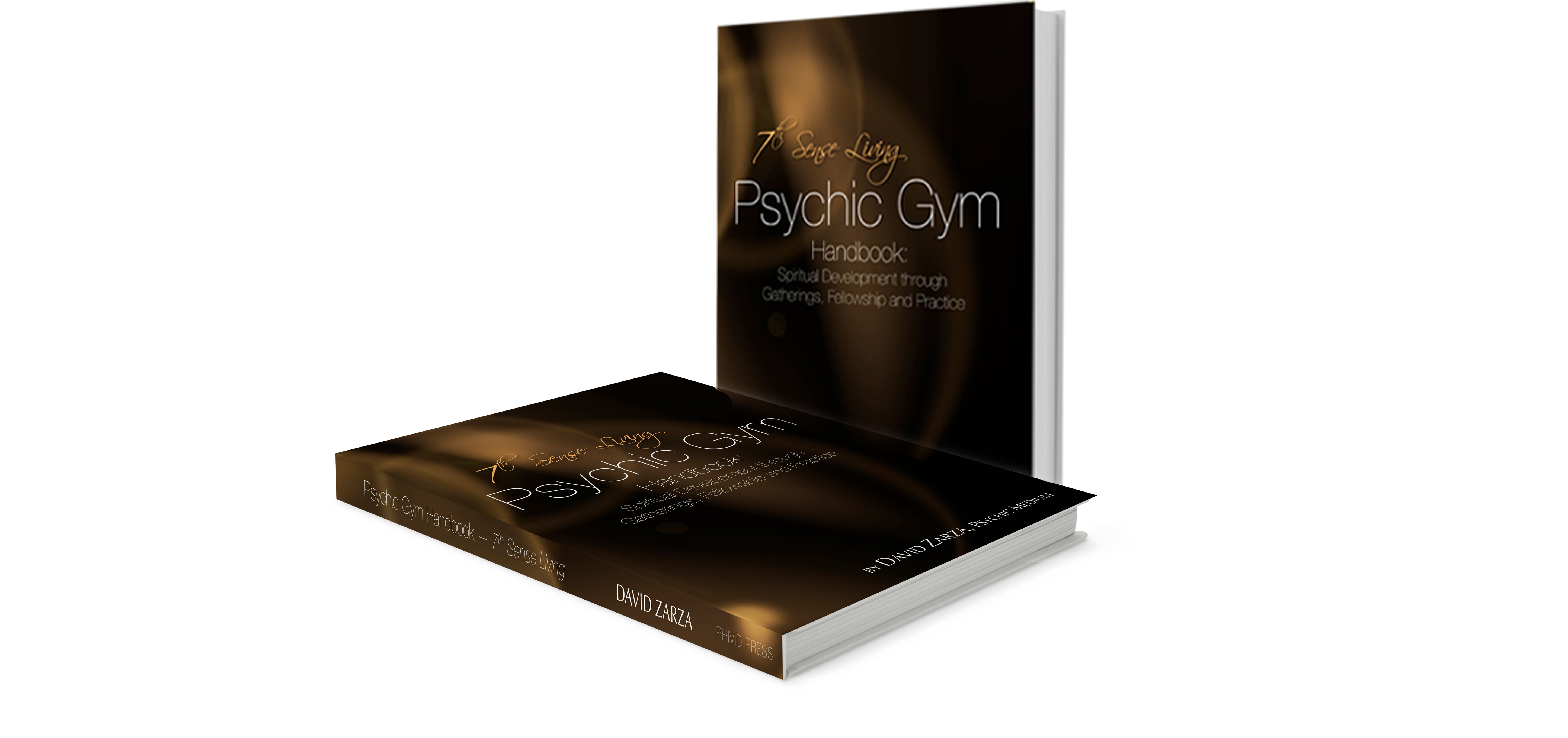 David Zarza Seattle Psychic Gym Handbook